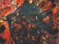 Филипп Малявин. Бабы. Зелёная шаль. 1914