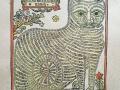Кот Алабрыс. Гравюра на дереве, середина XVIII в. 34 х 26,5 см.